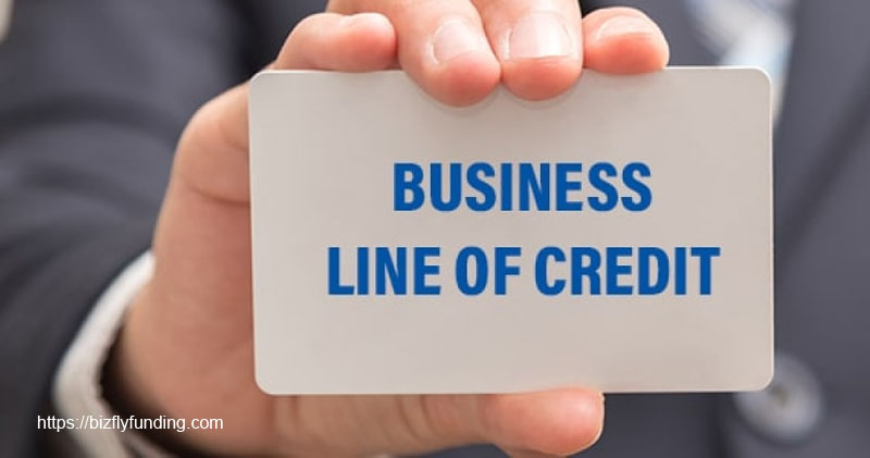 How a Business Line of Credit Works